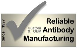 1997 - 2011: Reliable custom and OEM antibody manufacturing